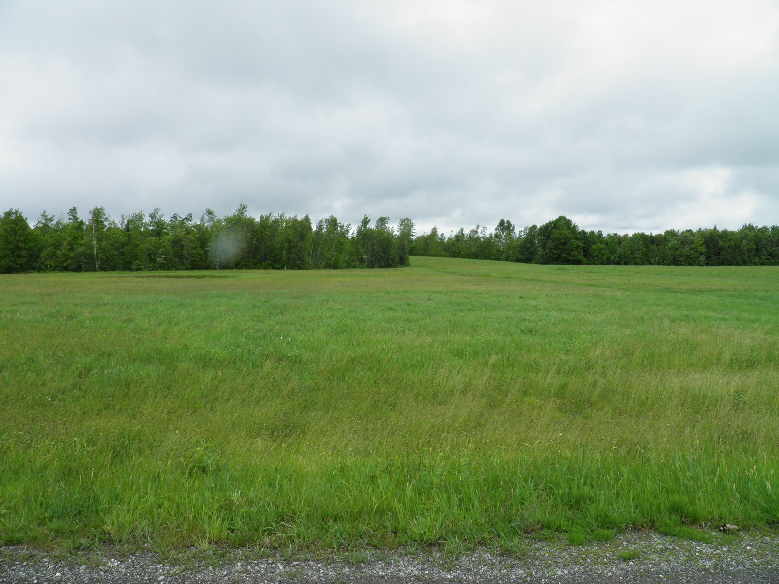Maine Land for Sale in Benedicta
