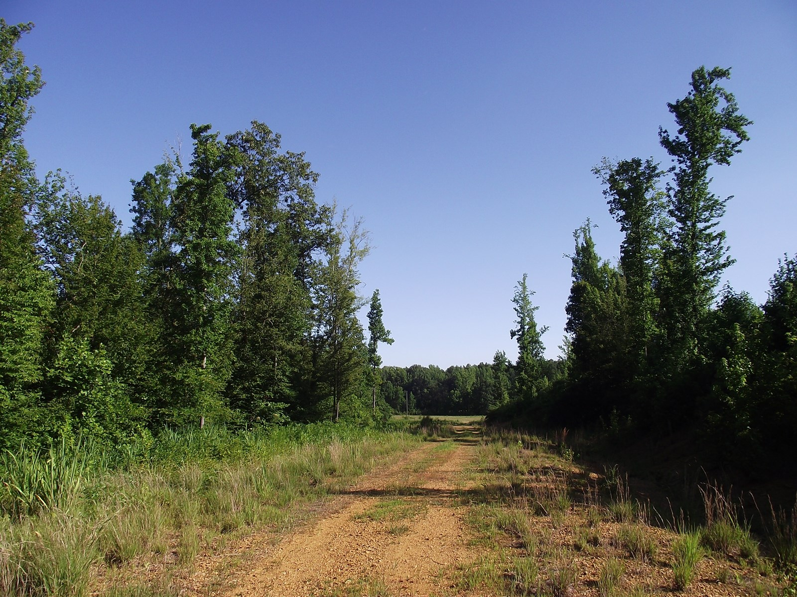 TENNESSEE LAND FOR SALE FOR HUNTING OR DEVELOPMENT