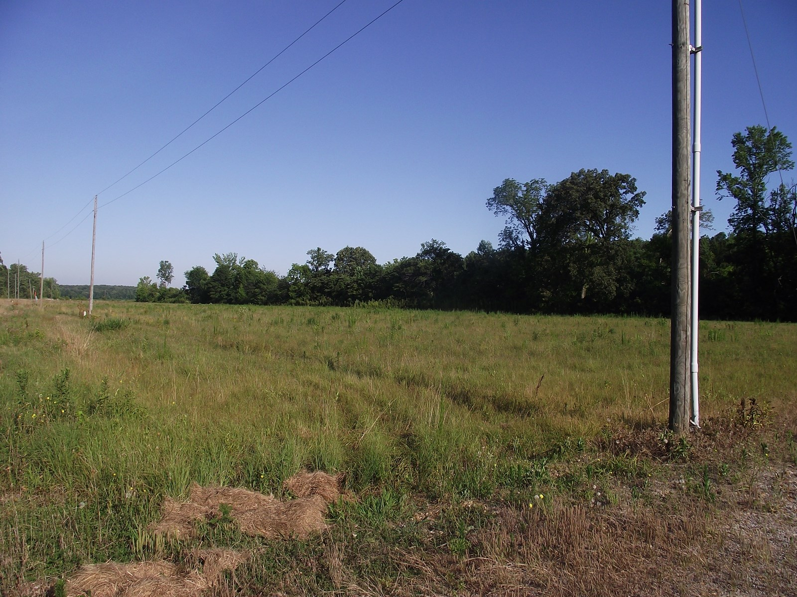 TENNESSEE LAND FOR SALE WITH CREEK, BUILD OR USE FOR HUNTING