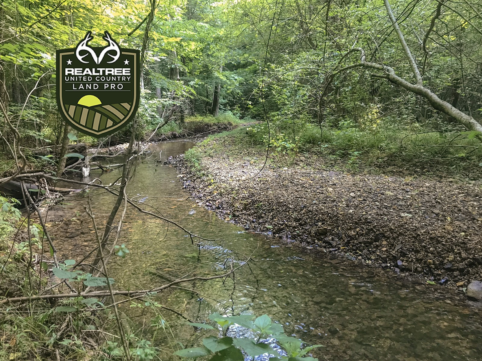 80+/- Rolling Acres Of Prime Hunting & Rec Land in Tennessee
