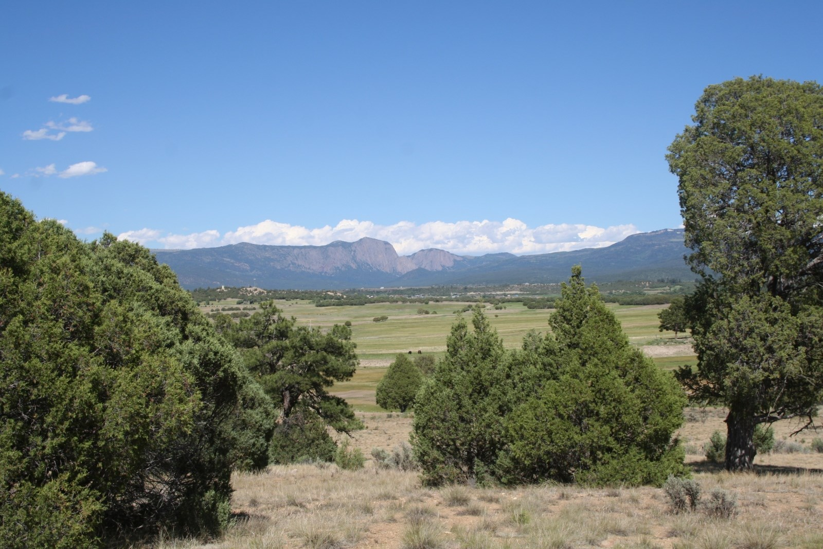 Land For Sale Near Chama Minutes from heron lake Great Views
