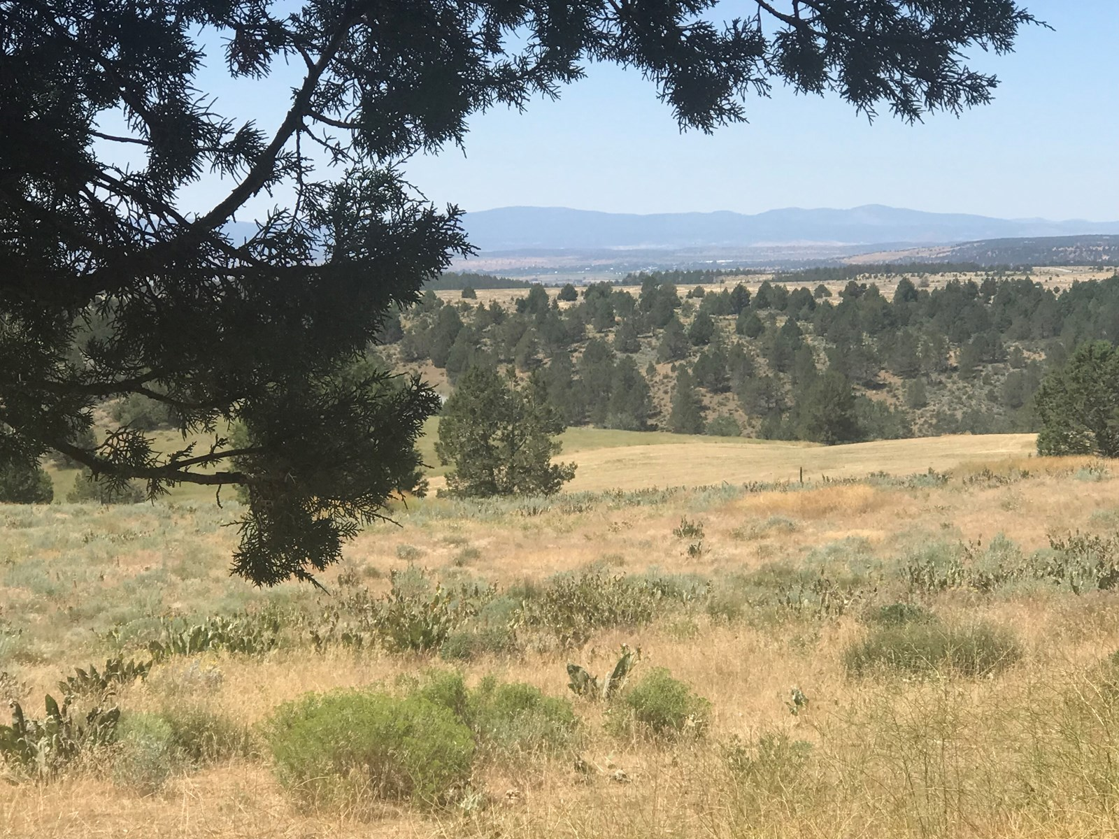 Modoc County CA Warner Mountain Land for Sale