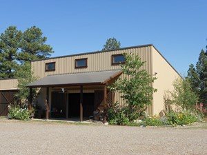 CHAMA NM HORSE PROPERTY FOR SALE W/ BARN AND ARENA