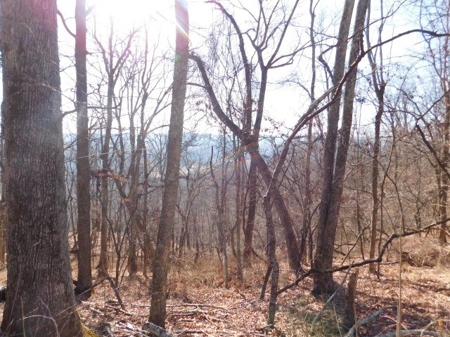 2.108 Acres in Capon Bridge, WV