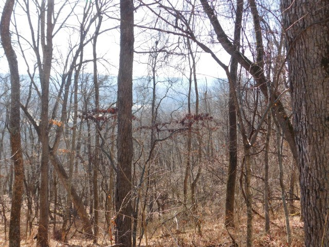2.038 Acres in Capon Bridge, WV