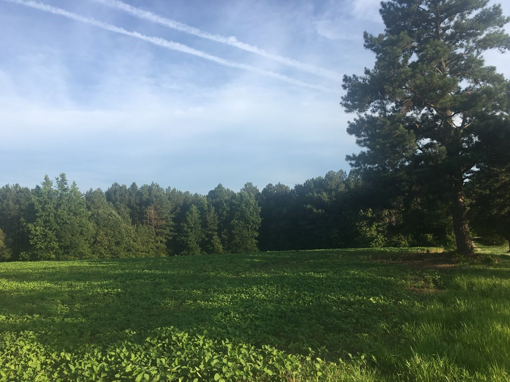 5 Acres Of Land In Southern VA in the Heart of Lake Country
