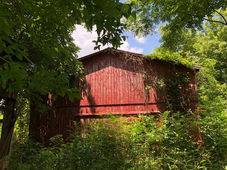 Barn, Acreage, Wooded, Wildlife, Metcalfe County, Kentucky