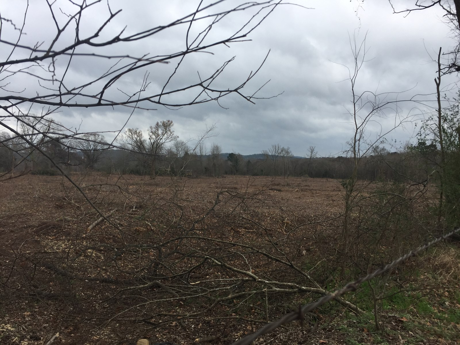 Hunting/Recreational Land, Cherokee County, Rusk, TX