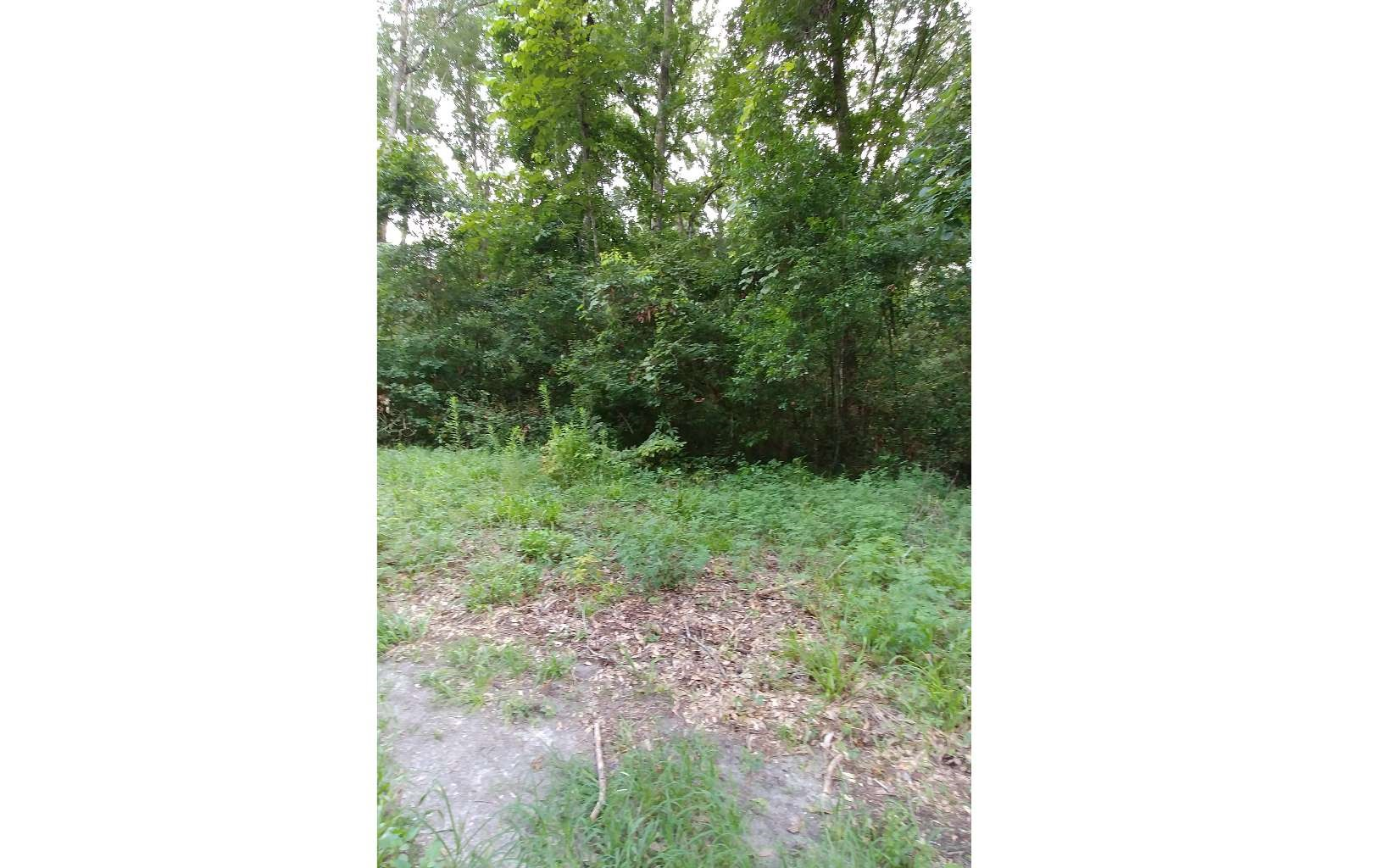 Almost an Acre Near Suwannee River with Amenities!