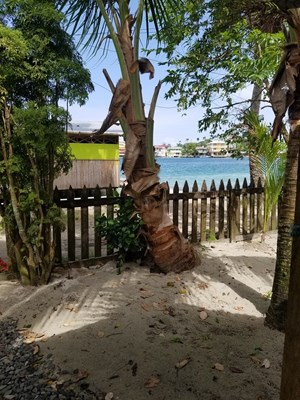 VERY AFFORDABLE OCEANFRONT DUPLEX