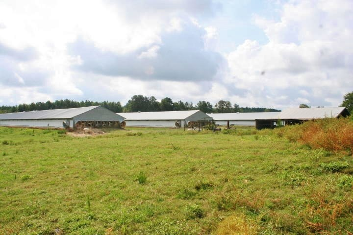 5 Broiler House Poultry Farm Pasture Home for Sale Jasper Co