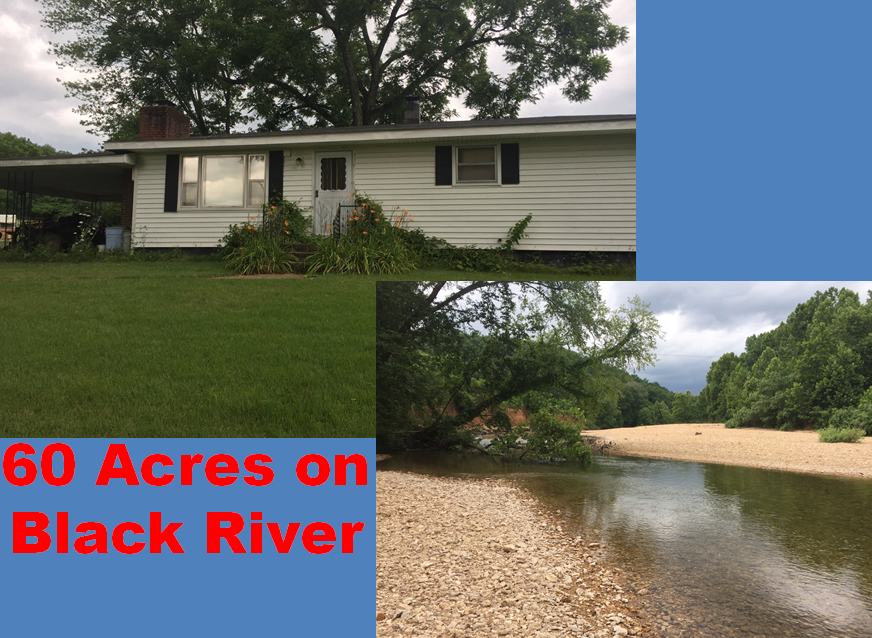60 acre farm on the Black River that borders National Forest