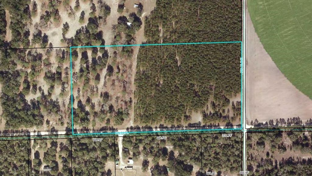 GILCHRIST COUNTY - 20 ACRES - VACANT LAND