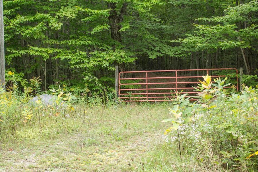 UP Acreage - 20 Acres for sale De Tour Village Michigan