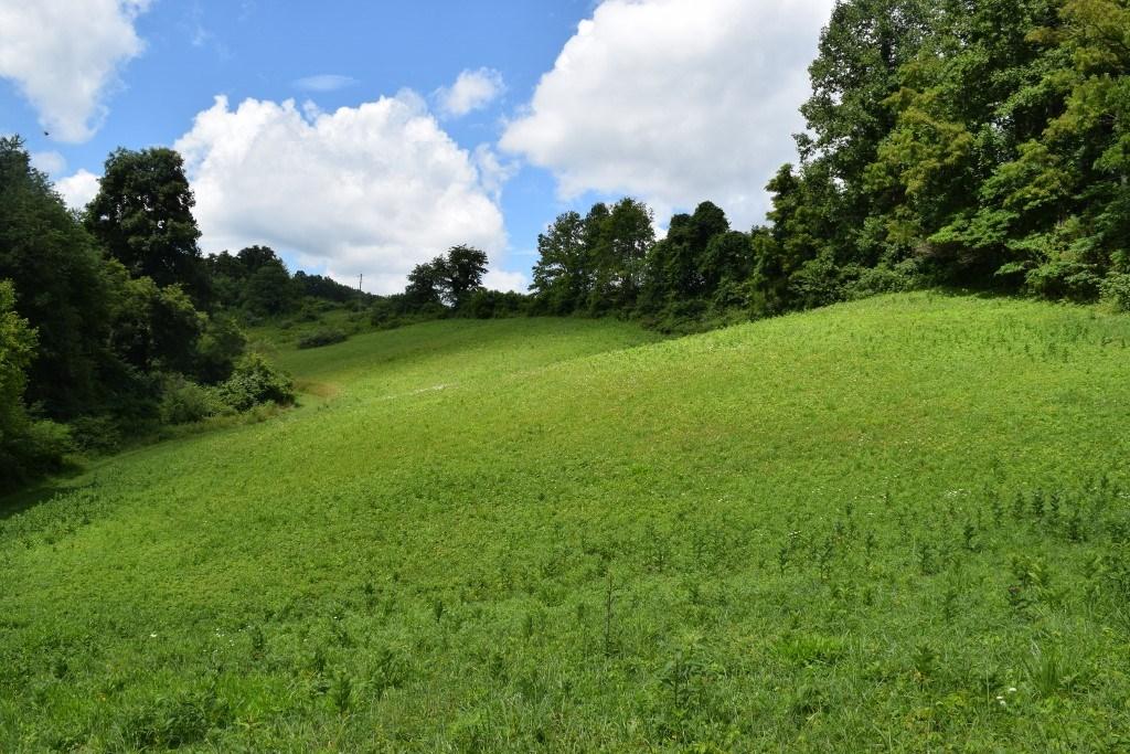 Unrestricted Floyd VA Land for Sale!