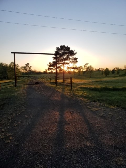 metal gate 13 acres Ringold