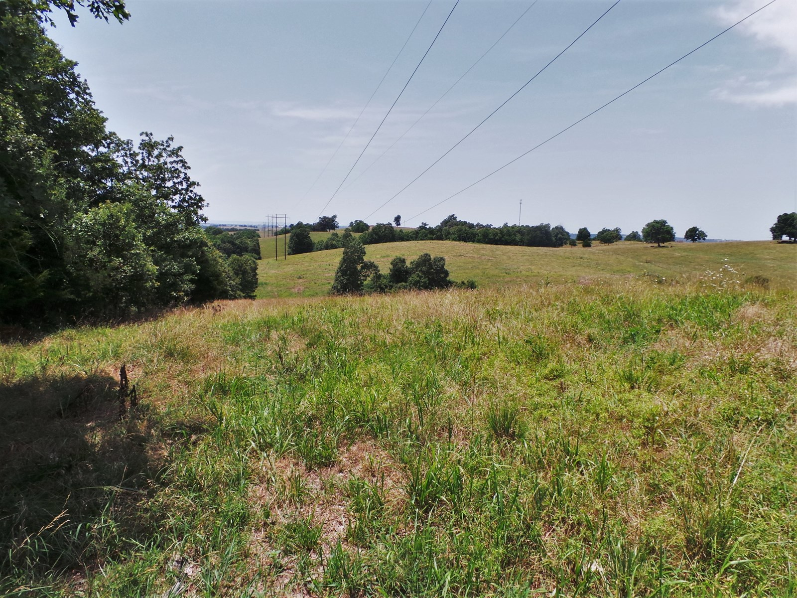 ACREAGE FOR SALE NEAR HARRISON ARKANSAS