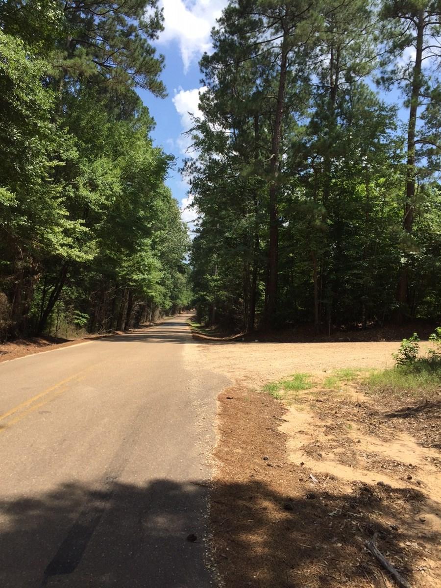 Saxon Estate Land Sale 08/16/2018 - Mature Pine Timberland