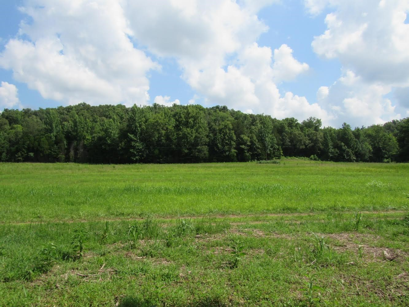 5.41 Acres of beautiful land in Perry County, TN. $29,900