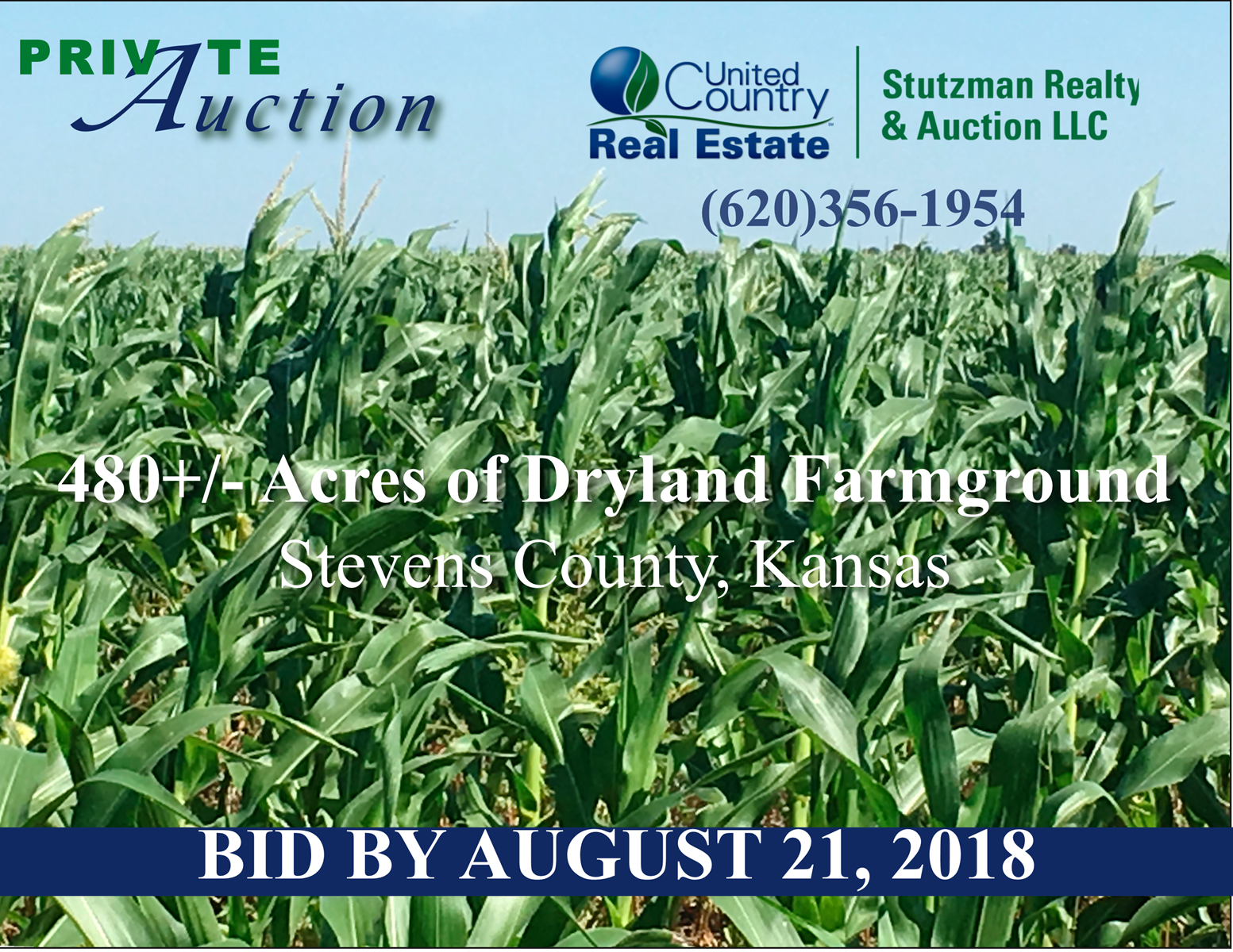 PRIVATE AUCTION   STEVENS COUNTY  KS   480 ACRE FARMLAND