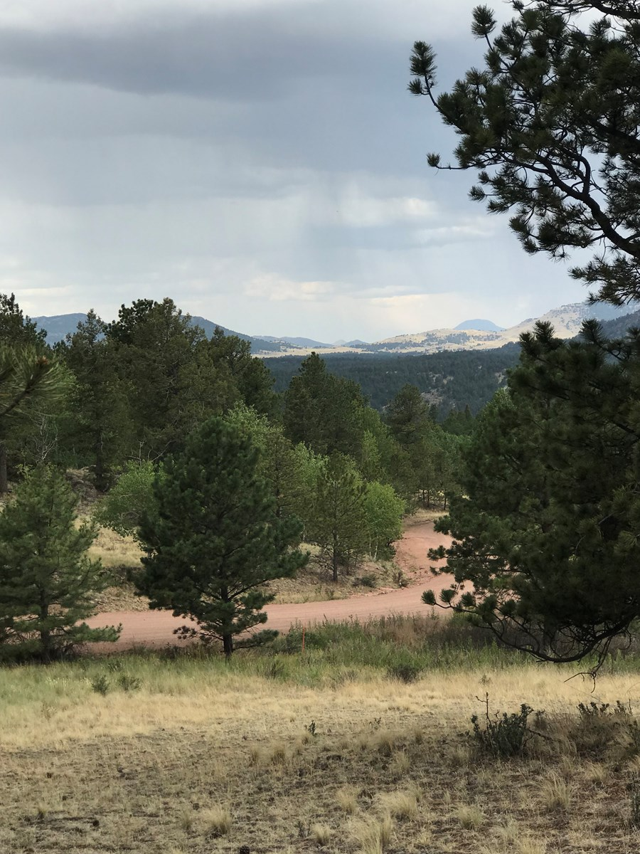 Amazing Views and Privacy W/No Covenants in Florissant, CO