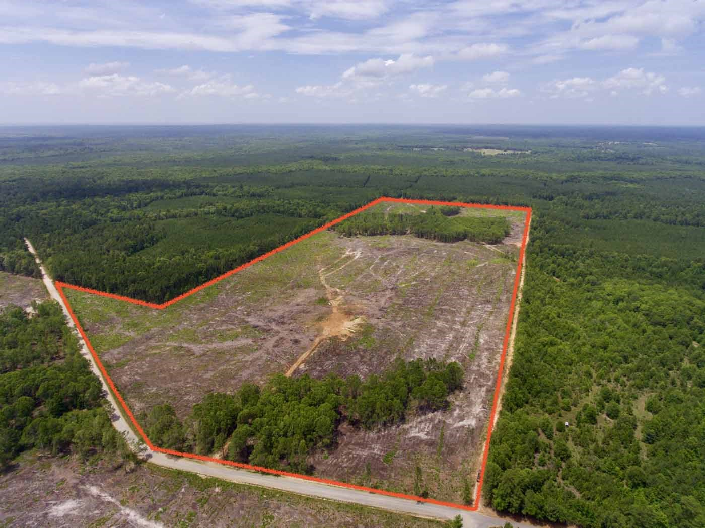 TIMBER ACREAGE / BOSSIER PARISH / 102 ACRES