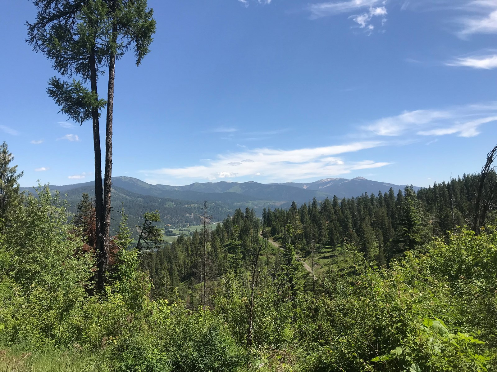 NORTH IDAHO LAND FOR SALE OVER 200 ACRES IN ST. MARIES