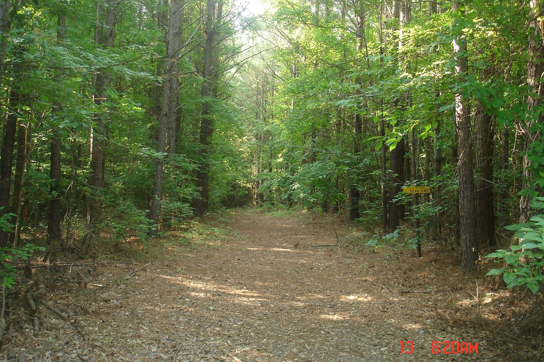 226 Acres for Sale in Choctaw County, MS