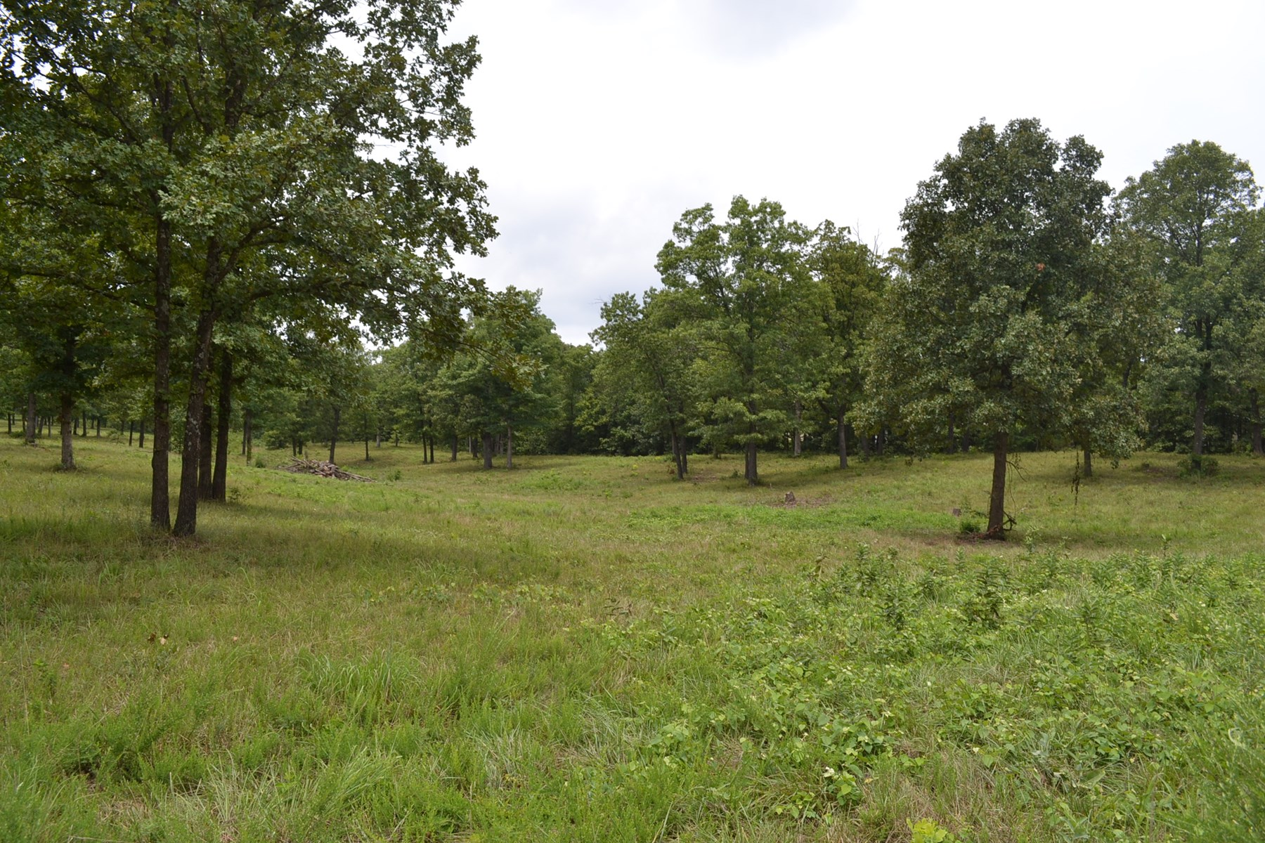 10 Acres - 2 Surveyed 5 Acre Lots - Building Sites