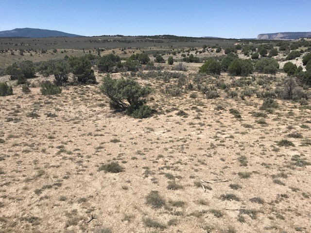 Great Land For Sale  great views Minutes from El Vado Lake