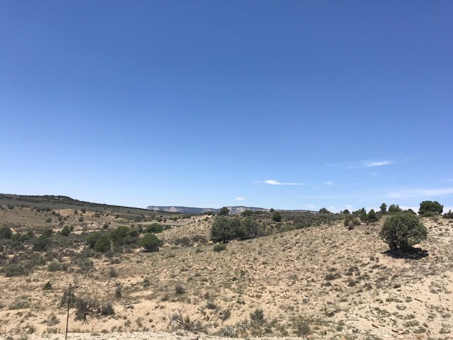 Land For Sale Northern NM near El Vado lake great Views