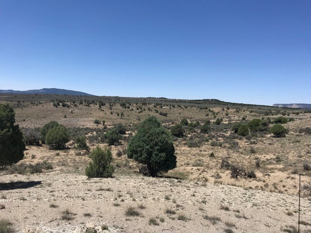 Northern NM Land For Sale Near El Vado lake with great Views