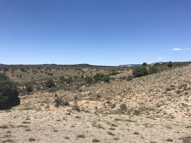 Land for Sale near El Vado lake  NM Northern NM w/ great vie