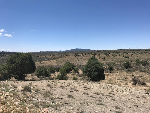 Land for sale near El Vado Lake in Northern NM