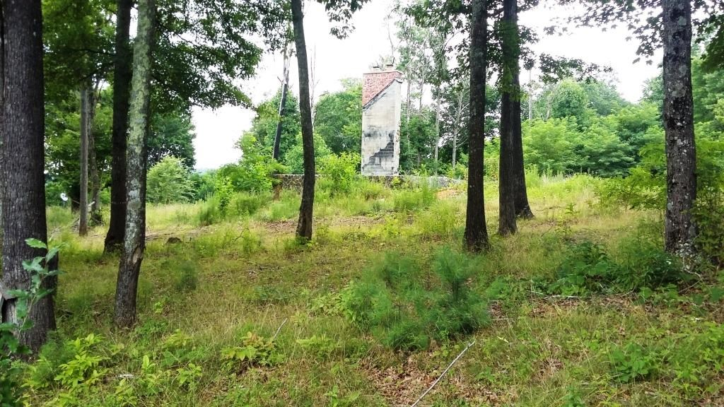 Wooded 12 acres with foundation/septic in place Bland, VA