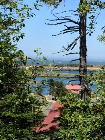 Land with Stunning Views of Ocean and The Rogue River