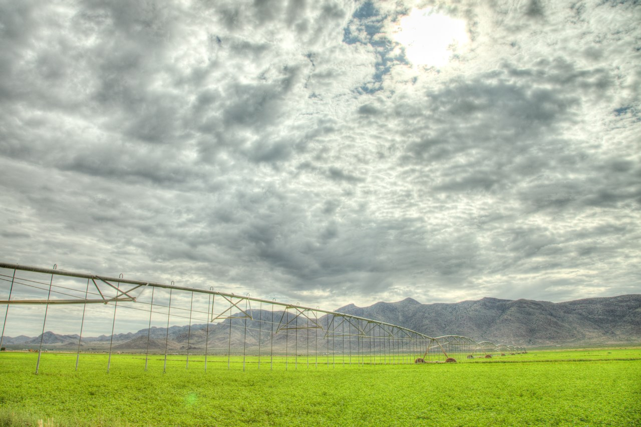 Farm For Sale on New Mexico/Arizona Border- 2 Pivots