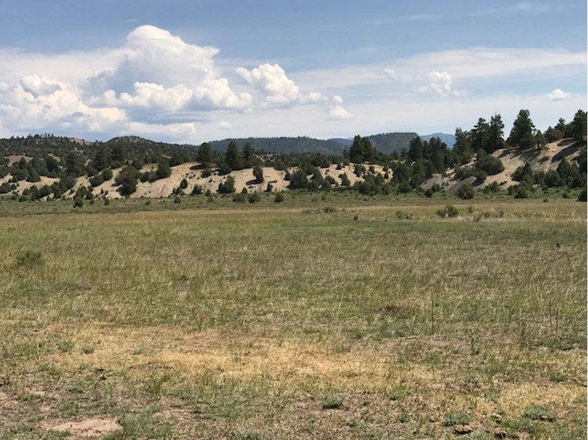 Land for sale west of Chama NM, great views and wildlife
