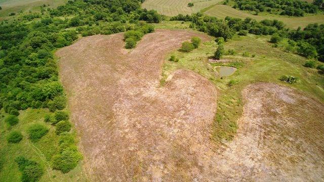 Appanoose County Farm for Sale