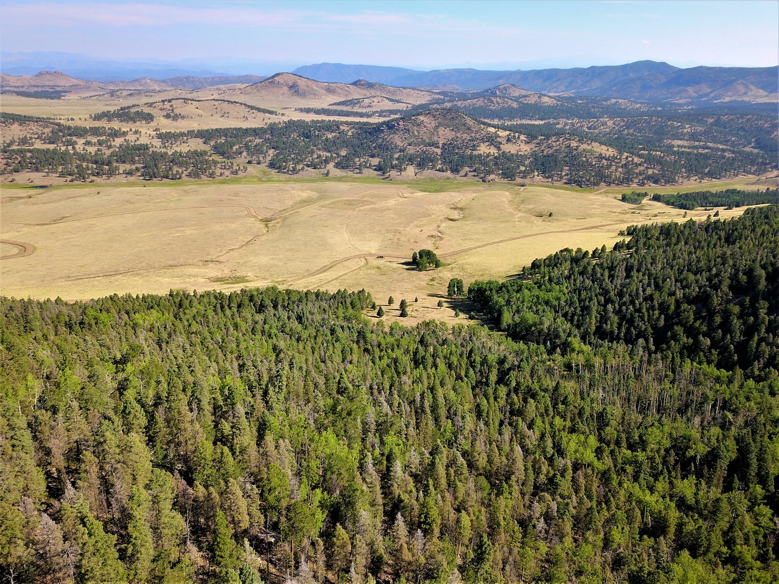 94 Acre Alpine Homestead-1080 Eagle Springs Rd