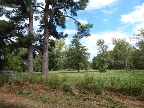 Northeast TX Land Adjoining U.S. Forestry Land