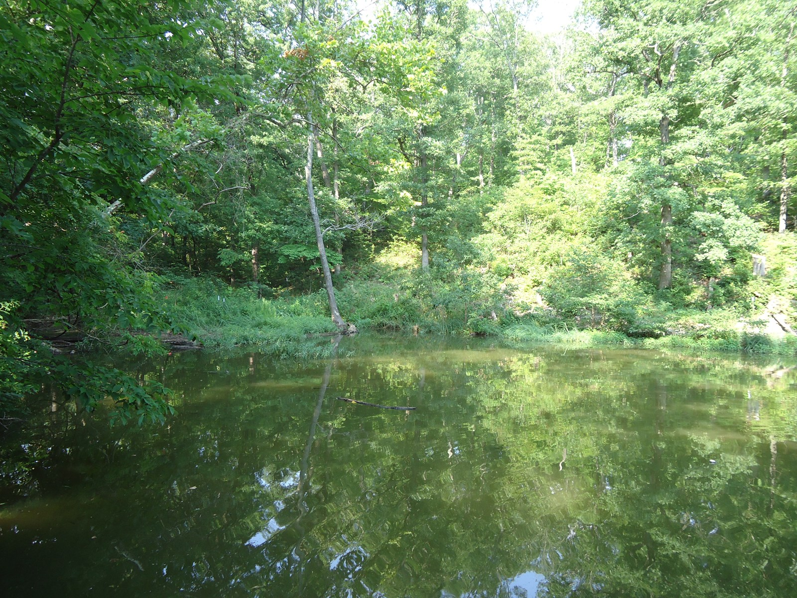Lake of the Ozarks Lakefront Property! 4 +/-Acres