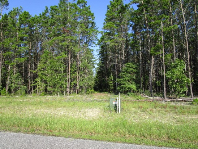 10 acres in Bristol FL gated community for $55,000