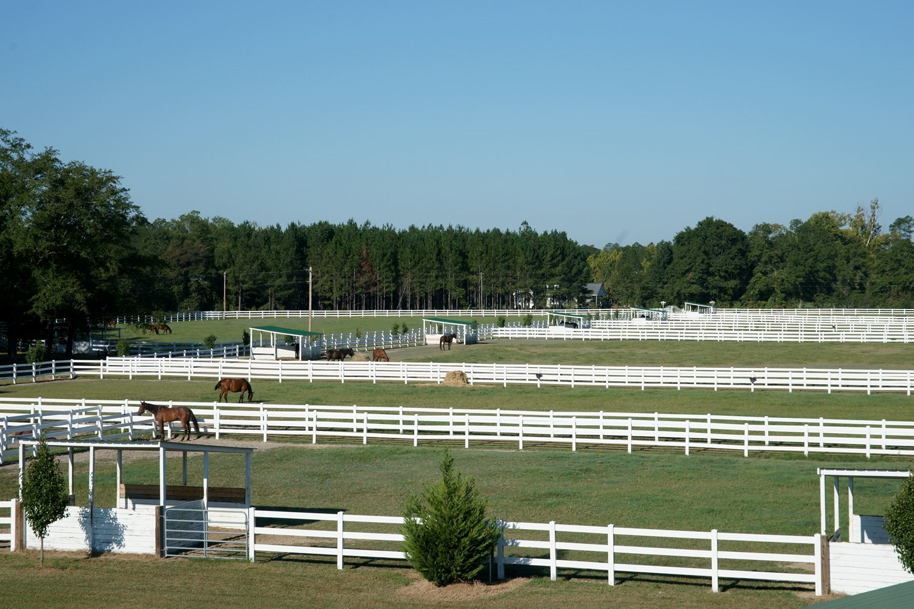 Equestrian Property Located in Southeast Bulloch County GA