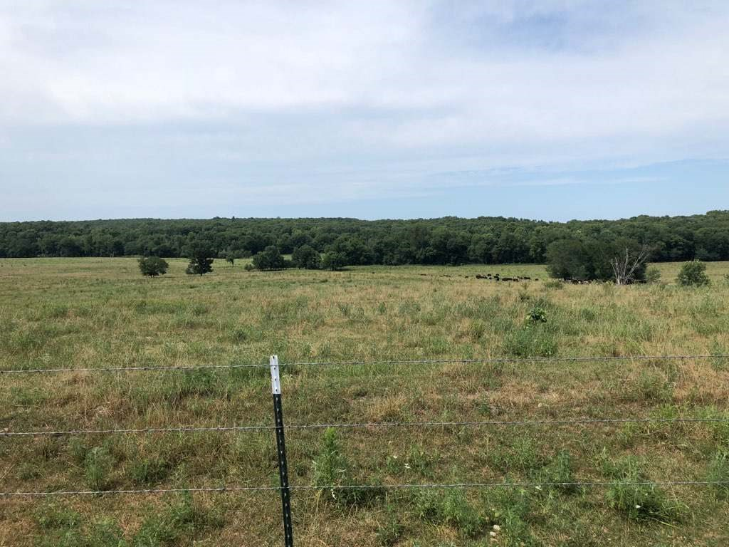 River Front Cattle Ranch with Hunting Land For Sale