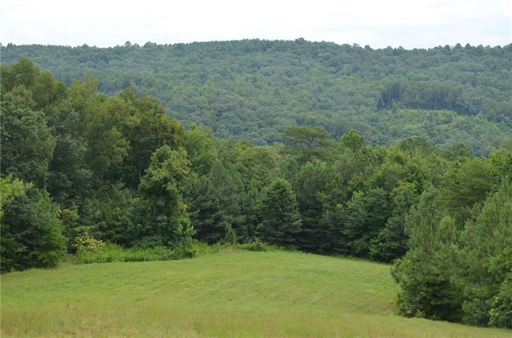 52.22 Acres - Long Branch Farms - North Georgia Mountains