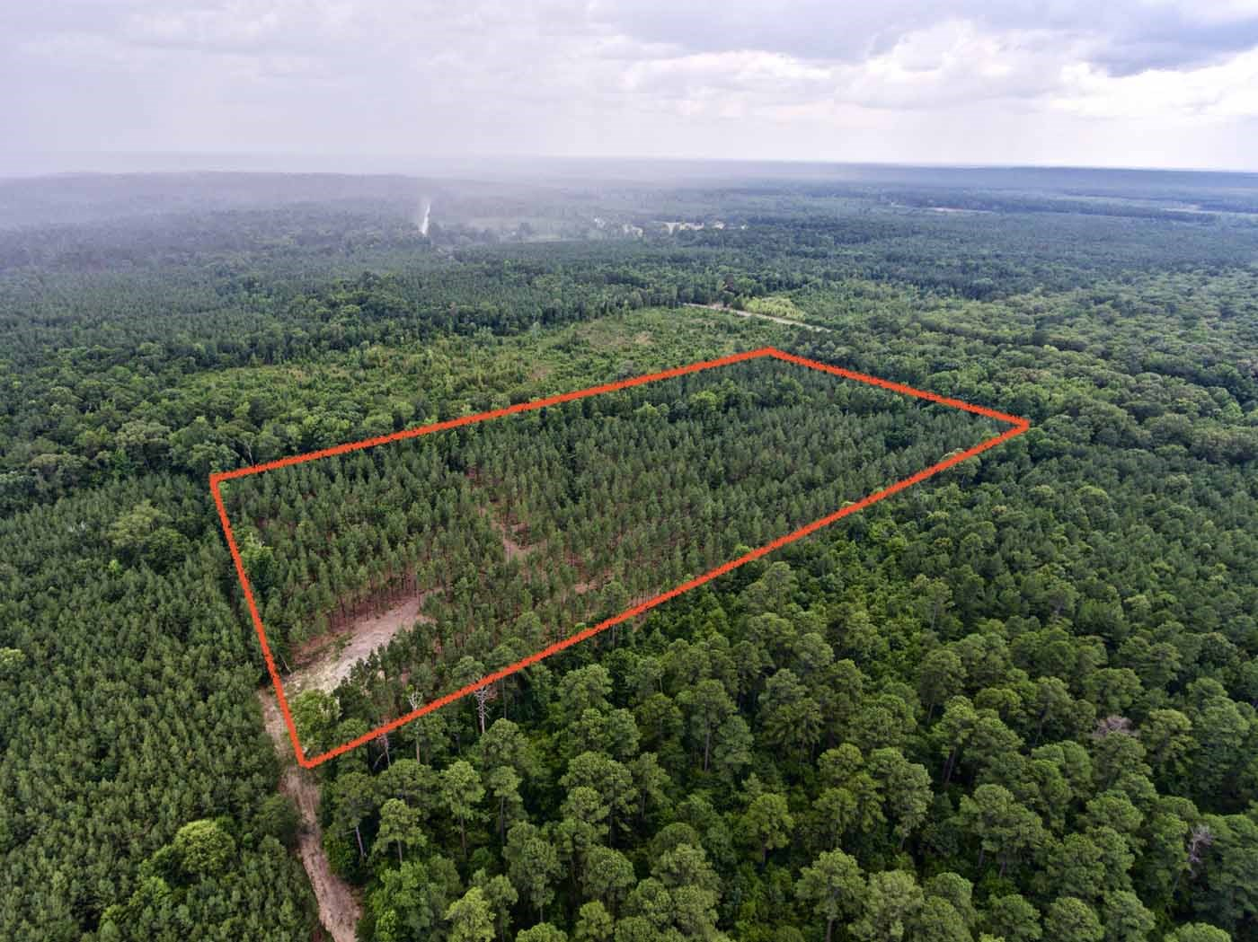 20 Acre Recreational/Timber Acreage Development Potential LA