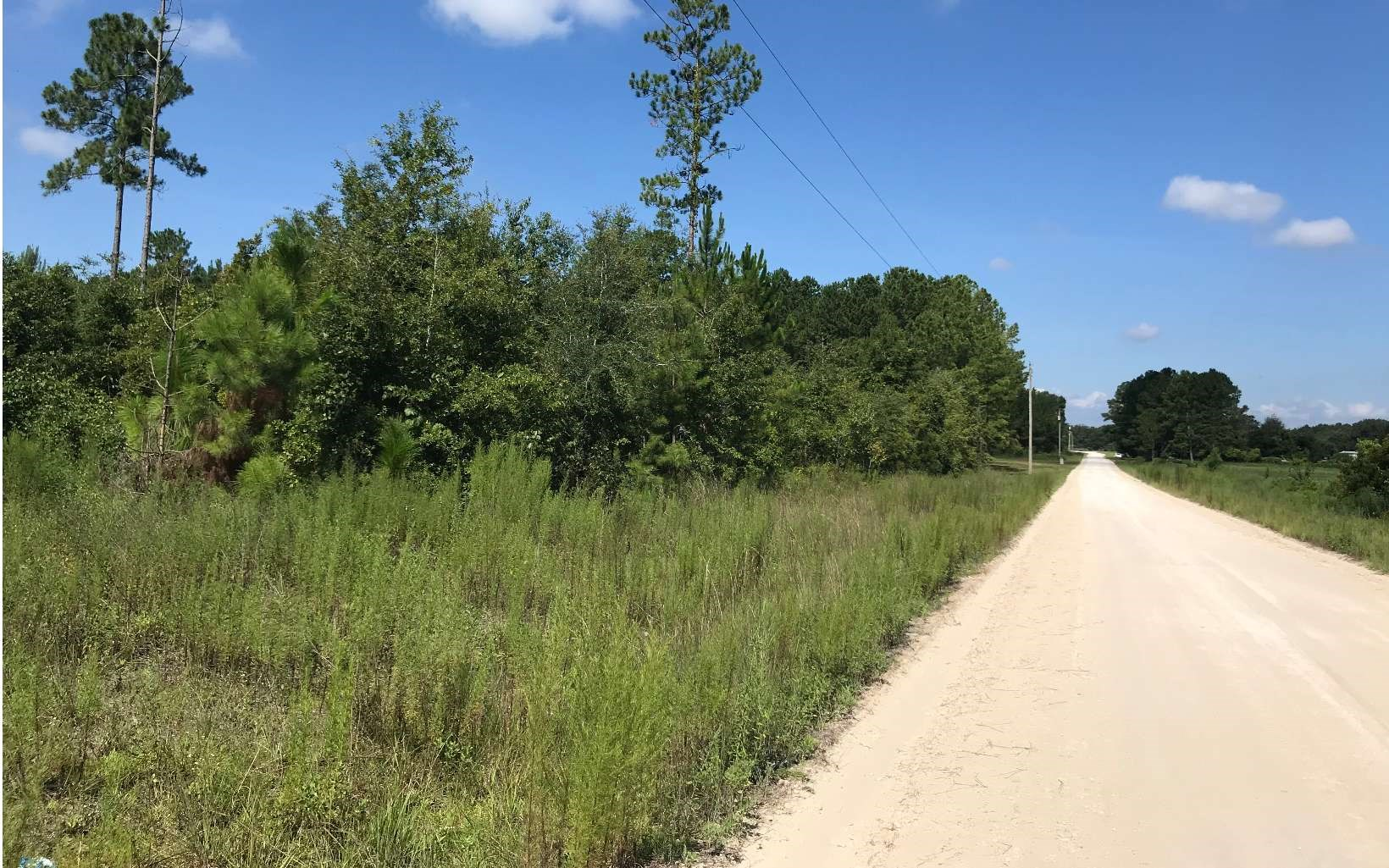 5 Acre Corner Lot For Sale in Live Oak, FL