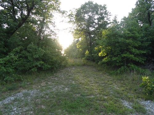 8 Wooded Acres