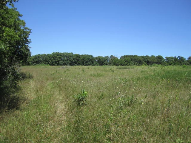 Land with Highway Frontage in Cooper County, Missouri
